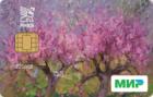 Кредитная — Кредитная карта / Мир Debit