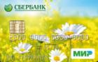 Пенсионная карта — Дебетовая карта / MasterCard Maestro, Мир Debit