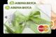 Азбука Вкуса — Дебетовая карта / MasterCard Gift